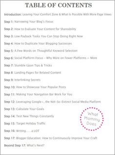 Blog Traffic E-book: 17 Strategies I Used to Go From 17K to 350K+ Page Views in 9 Months -