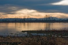 Early morning view of Mount Baker from Pitt Meadows British Columbia [OC] [2738 x 1825]