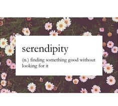 adorable, art, basic, boho, cool, cute quotes, definition, floral ...