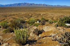 Richtersveld, Northern Cape, South Africa