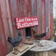 Last One in is A Rotten Egg barn wood sign chicken house sign fixer upper chicken coop sign fixer upper chicken house hand painted sign Cute Chicken Coops, Chicken Coop Decor, Chicken Coop Signs, Chicken Pen, Chicken Coup, Best Chicken Coop, Backyard Chicken Coops, Chicken Humor, Building A Chicken Coop