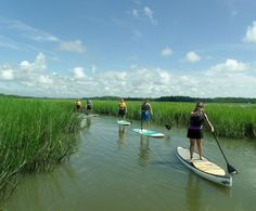 Water Dog Paddle Co., Seabrook Island: ranked No.1 on TripAdvisor among 8 attractions in Seabrook Island.