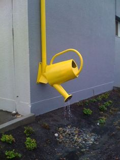 Watering Can...on downspout