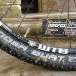 Review Schwalbe Thunder Burt