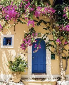 Although you'd think Greek islands are fairly similar, you'd be completely wrong! Each island has it's own personality and appeal. Here are the 8 Best Greek Islands to visit, especially if it's your first time! Greek Islands To Visit, Best Greek Islands, Beautiful Flowers, Beautiful Places, Beautiful Pictures, Beautiful Streets, Fond Design, Flower Aesthetic, Flowering Trees