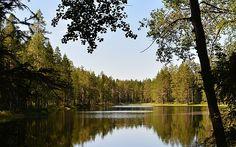 Circuit Finlande : Escapade finlandaise en famille | Evaneos Nature Sauvage, Escapade, Circuit, Mountains, Travel, Finland, Tourism, Vacation, Viajes