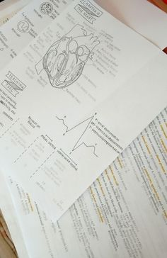 recycledpaperstars: The thought of tomorrow's anatomy exam is giving me heart palpitations.