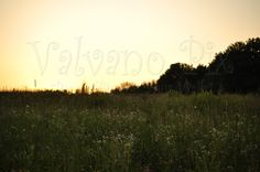Landscapes - Valvano Pix