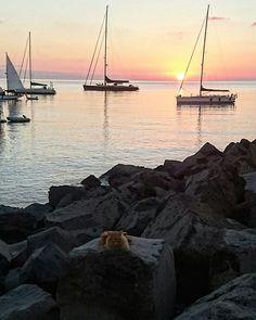 Red cat VULCANO ISLAND #Aeolianislands #Messina  #Sicilia