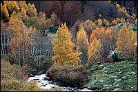 Valle de Barrados, Valle de Aran, Pirineos, Lleida, Catalunya, España
