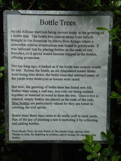 Outdoor Bottle Tree | Kanapaha Botanical Gardens Bottle Tree - The origin of Bottle Trees.