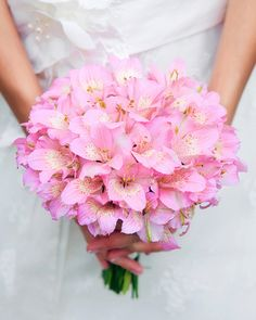 Is this pink ballet or brighter than that?  Also you're looking for a mix of blooms/filler, right?