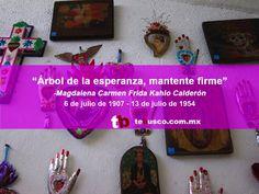 tebusco (@TeBusco_mexico) | Twitter