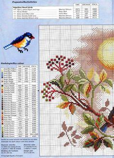 CURIOSA CORUJA: Gráfico Ponto Cruz - Pássaros