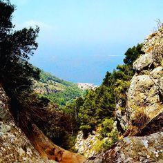 Another day in paradise #Mallorca #destinationwedding #wedding #honeymoon #elopement #weddingplanning #hochzeit