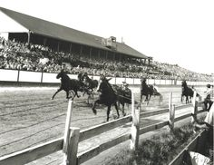Harness racing in Prince Edward Island, 1945. PhotoL John Mailer, LIBRARY AND ARCHIVES CANADA