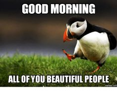 Unpopular Opinion Puffin has some strong words on this Meme Monday. I think the library is better than Redbox. You Funny, Really Funny, Funny Jokes, Hilarious, Funny Stuff, Sarcastic Humor, Funny Gifs, Good Morning Meme, Morning Memes
