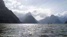 Milford Sound, Nieuw-Zeeland Milford Sound, Fiji, Auckland, Dubai, Waterfall, Places To Visit, Wildlife, Boat, Explore