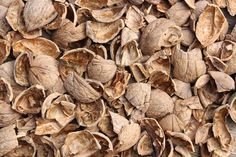 Walnut Shell is the magic ingredient in our Detoxifying Sea Salt Body Scrub. Along with Almond Meal and Sea Salt, it detoxifies and gently buffs away dead skin cells, revealing softer, more radiant skin. Homemade Face Wash, Homemade Skin Care, Sea Salt Body Scrub, Walnut Shell, Natural Solutions, Almond Recipes, Diy Hairstyles, Hair Loss, Herbalism