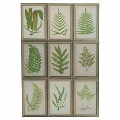 Beautiful set of framed antique ferm engravings, from DC member Lorfords