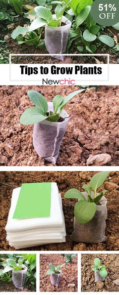 Tips for planting -- 100pcs/Pack Garden Supplies Environmental Protection Nursery Pots Seedling Raising Bags Fabrics#newchic#newchichome#newchicgarden#plant#spring