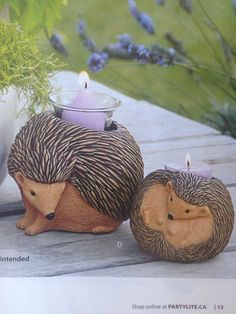 OMGOSH HOW CUTE IS THIS???!!!  Get yours before the new book starts April 1  www.partylite.biz/CariCain