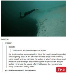Scary funny tumblr post lol finding nemo disney