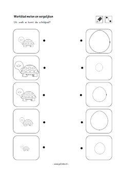 Werkblad meten en vergelijken Uit welk ei komt de schildpad? [jufanke.nl] Turtle Pattern, Ds, Learning, Winter, Sports, Winter Time, Hs Sports, Studying, Teaching