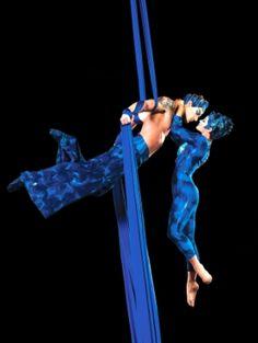 Cirque du Soleil:Dralion, the ariel pas de deux was amazing! was definately my favorite part of the show! so graceful and beautiful!!!