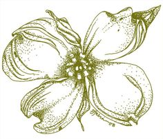 Another possible flower tattoo