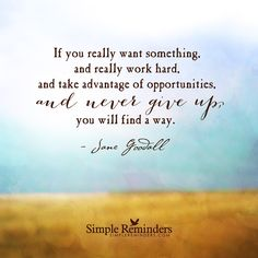 If you really want something, and really work hard, and take advantage of opportunities, and never give up, you will find a way. — Jane Goodall Amazing Quotes, Great Quotes, Words Quotes, Me Quotes, Qoutes, Sayings, Famous Quotes, Social Work Quotes, Best Positive Quotes
