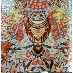 Corujando! jardim secreto / mozaraberthier /Johanna Basford / jardim secreto inspire / booktorelax / pintando / coruja