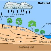 Groundwater flow showing natural conditions Water Movement, Water Flow, Water Information, Different Types Of Rocks, Open Street Map, Soil Layers, Science Topics, Water Resources, Water Quality