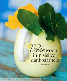 Vrede woon in 'n siel vol dankbaarheid Afrikaanse Quotes, The Secret Book, Happy Relationships, Day Wishes, Printable Quotes, Religious Quotes, Inspirational Thoughts, Happy Thoughts, True Words