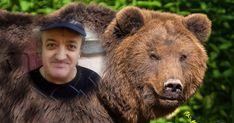 Hai să afli acum în ce bestie te transformi când îți vin spumele! Fă testul! Brown Bear, Beast, Animals