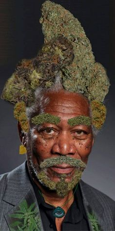 BUY NICE BUDS ONLINE BUY ONLINE BUDS medimarijuana Shop; Visit Our Legit, Reliable And Discreet Online Cannabis Dispensary And Get Your High Grade Medical Marijuana   Weed for Sale   THC and CBD Oil For Fale   Cannabis oils   Edibles For Sale   Hemp Oil   Wax   Shrooms For Sale, Top Grade Strains ( Hybrid, Indica and Sativa).WEBSITE..http://medimarijuana.co.nf)EMAIL.gangermancity@gmail.com Call 512-829-8931 https://gradeamedicalmarijuanabudss.blogspot.com/