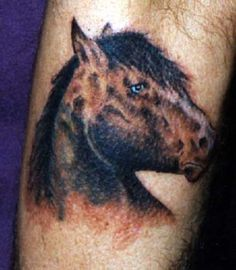 Horse Tattoos - http://tattooparadise.info/page39_2.html