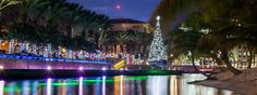 A Cayman Christmas! www.passengerpicks.com