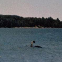 Loch Ness Monster in Lake Champlain?