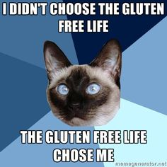 Sometimes gluten is worth the headache/itchiness, but not all day every day.