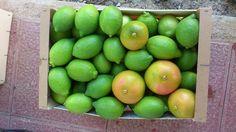 Limón y algún pomelo!    www.ventadelimones.es