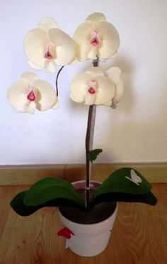 Orquidea fieltro de Niña Pija