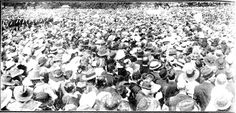 Snapshots of Street Scenes in Sydney Following the Official News of the Armistice - November 1918 - Section of the Great Crowd in the Domain