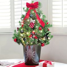 Glad Tidings Decorated Christmas Tree - From the decorative tin to the decorated Pine tree, this gift will appeal to anyone's holiday spirit. This product is no longer available, however click the image to see this year's Holiday Trees!