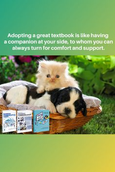 Adopting a great textbook is like having a companion at your side, to whom you can always turn for comfort and support. Bovee and Thill's business communication textbooks are the leading texts in the field. Request and examination copy today (instructors only) by clicking the link below. By Your Side, Textbook, Communication, Adoption, Teddy Bear, Business, Animals, Link, Texts