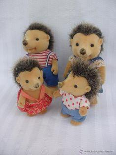Familia de erizos ( vendidos, sold)