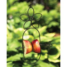 Fruit-loving birds like orioles, waxwings, cardinals, tanagers, grosbeaks, mockingbirds and more will flock to this fun fruit spear! Skewer grapes, bananas or halved apples and oranges to this attractive recycled metal feeder decorated with flowers. Handcrafted in India with eco-friendly materials.