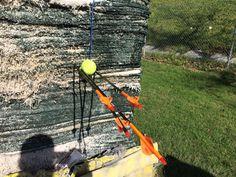 60 yrd tennis ball target. Hoyt charger.