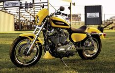 2006 Harley Davidson XL 1200R Sportster 1200 Roadster