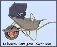 Landau portugais
